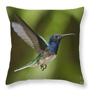 Spread Your Wings... Throw Pillow