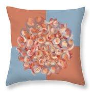 Spreeze Coral Throw Pillow