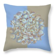Spreeze Sky Throw Pillow