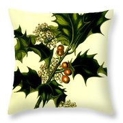 Sprig Of Holly With Berries And Flowers Vintage Poster Throw Pillow