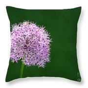 Spring Allium Throw Pillow