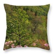Spring Along The Blue Ridge Throw Pillow