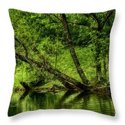 Spring Along West Fork River Throw Pillow
