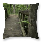 Spring And All Throw Pillow