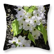 Spring Apple Blossoms Throw Pillow