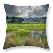 Spring At Dry Lagoon 1 Throw Pillow