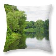 Spring At Kings Pond Throw Pillow