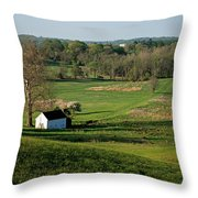 Spring At Maurice Stevens Spring House Throw Pillow