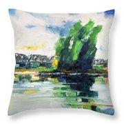 Spring At River Elbe Near Doemitz Germany Throw Pillow