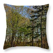 Spring At The Pond Series IIi Throw Pillow