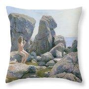 Spring At The Rock Shore  Throw Pillow