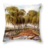 Spring At The Source Of The Skamander Throw Pillow