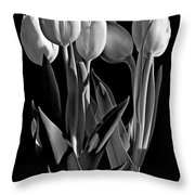 Spring Beauties Bw Throw Pillow