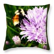 Spring Bee Throw Pillow