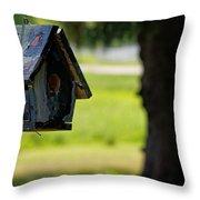 Spring Birdhouse Throw Pillow