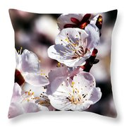 Spring Bloom 3 Throw Pillow