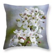 Spring Blooming Bradford Pear Blossoms Throw Pillow