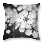 Spring Blooms 6690 Throw Pillow