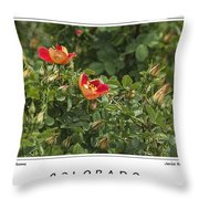 Spring Blooms In Colorado Throw Pillow