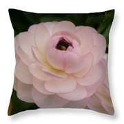 Spring Blooms Of 2013 A  Throw Pillow