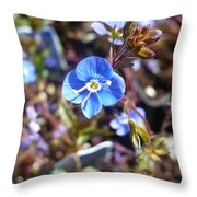 Spring Blooms Of 2013 F Throw Pillow