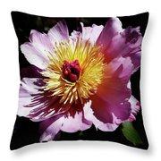 Spring Blossom 12 Throw Pillow
