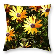 Spring Blossom 4 Throw Pillow
