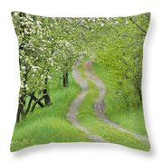 Spring Blossom Road Throw Pillow