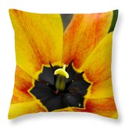 Spring Blossom Sbp Throw Pillow