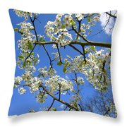 Spring Blossoms 2014 Throw Pillow