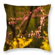 Spring Blossoms I Throw Pillow