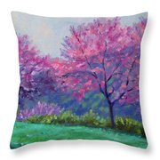 Spring Blossoms On Mill Mountain Throw Pillow