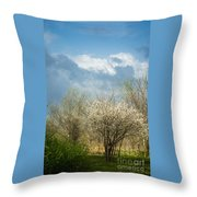 Spring Blossoms Storm Approaching Throw Pillow