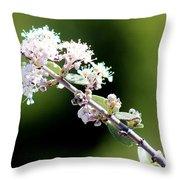 Spring Blossoms White 031015aa Throw Pillow