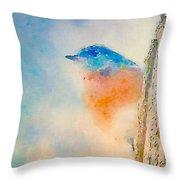 Spring Blues - Digital Watercolor Throw Pillow