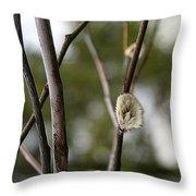 Spring Branches 1 Throw Pillow