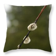 Spring Branches And Buds Throw Pillow