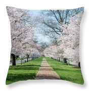 Spring Cherry Trees Throw Pillow