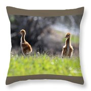 Spring Chicks In The Sunshine Throw Pillow