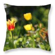 Spring Colour Throw Pillow