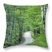Spring Country Road Throw Pillow