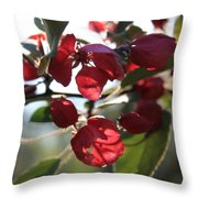 Spring Crabapple Blossom Throw Pillow