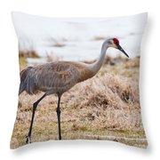 Spring Crane Throw Pillow