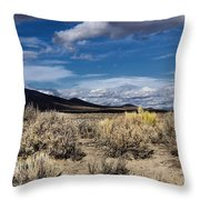 Spring Creek 2 Throw Pillow