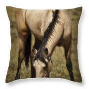 Spring Creek Basin Wild Horse Grazing Throw Pillow