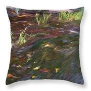 Spring Creek In Oak Canyon Park Throw Pillow
