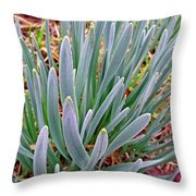 Spring Daffodil Plant Throw Pillow