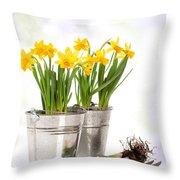 Spring Daffodils Throw Pillow by Amanda Elwell