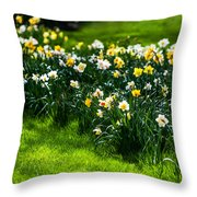 Spring Daffodils. Park Keukenhof Throw Pillow