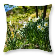 Spring Daffodils.park Keukenhof Throw Pillow